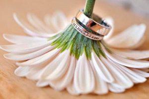обручальные кольца на ромашке