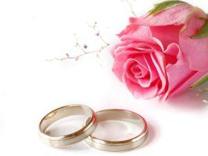 свадебные кольца и роза