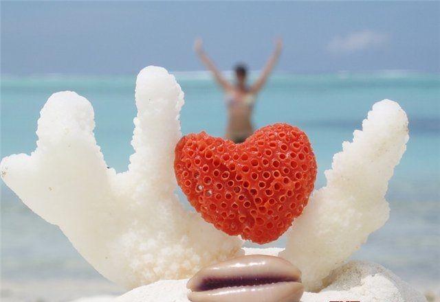 Красное сердце в белом коралле